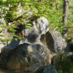 huge rocks in the garden
