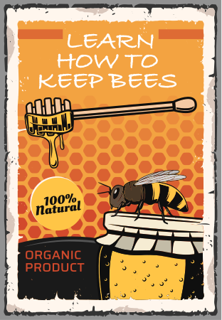 learn how to keep bees at home guide ebook