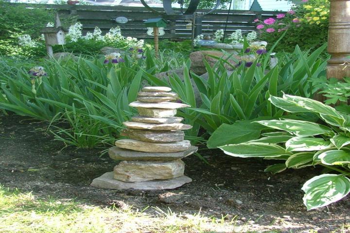 rain garden with rocks