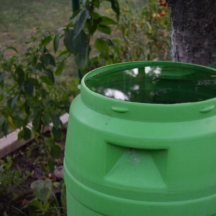 rain water harvesting on green container