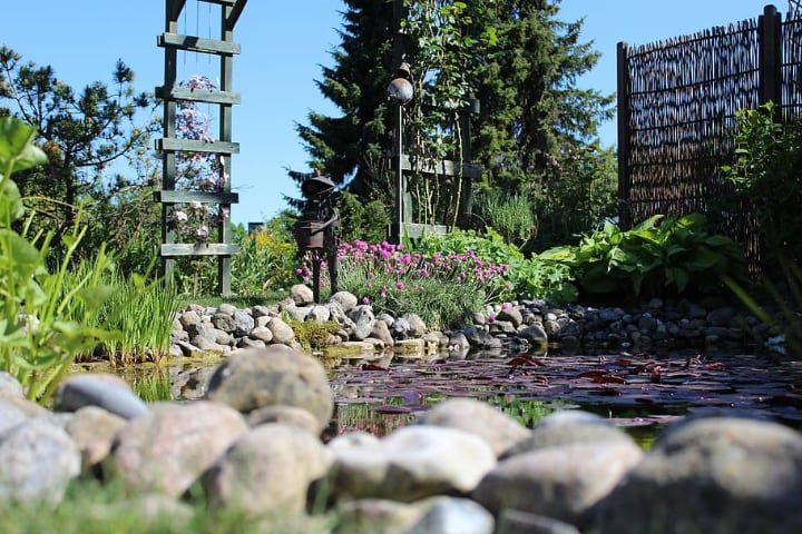 rocks on a garden with pond