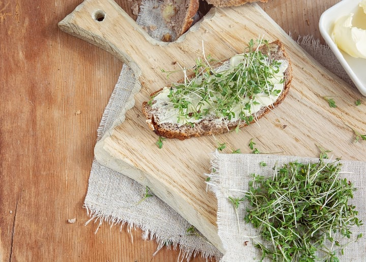 toast with microgreens