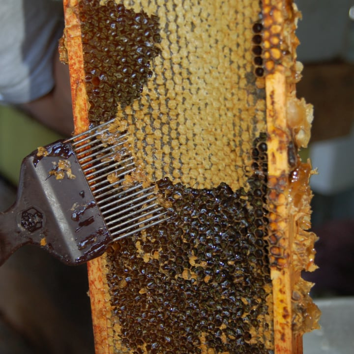 uncapping the honeycomb