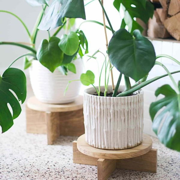 plant stand for indoors