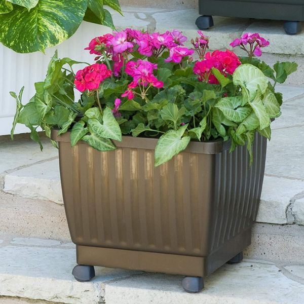 plant stand on rollers