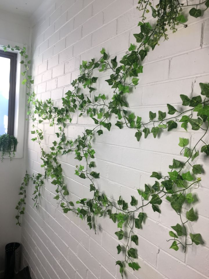 plant wall covering