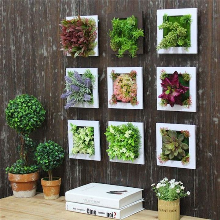 plant wall frame