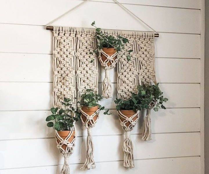 plant wall hangers
