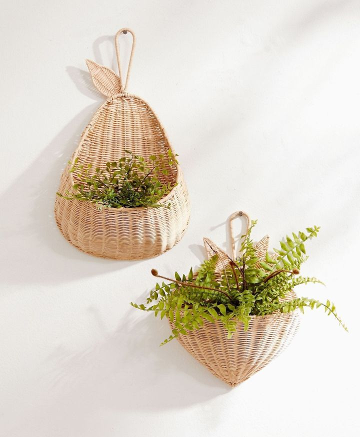plant wall holder