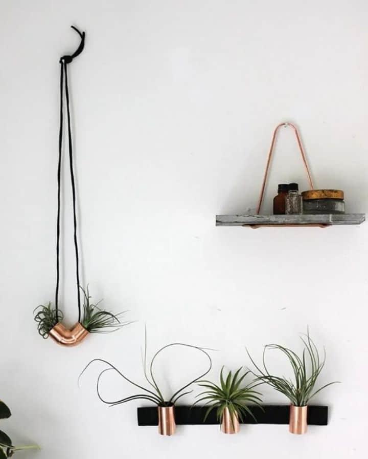 plant wall planters
