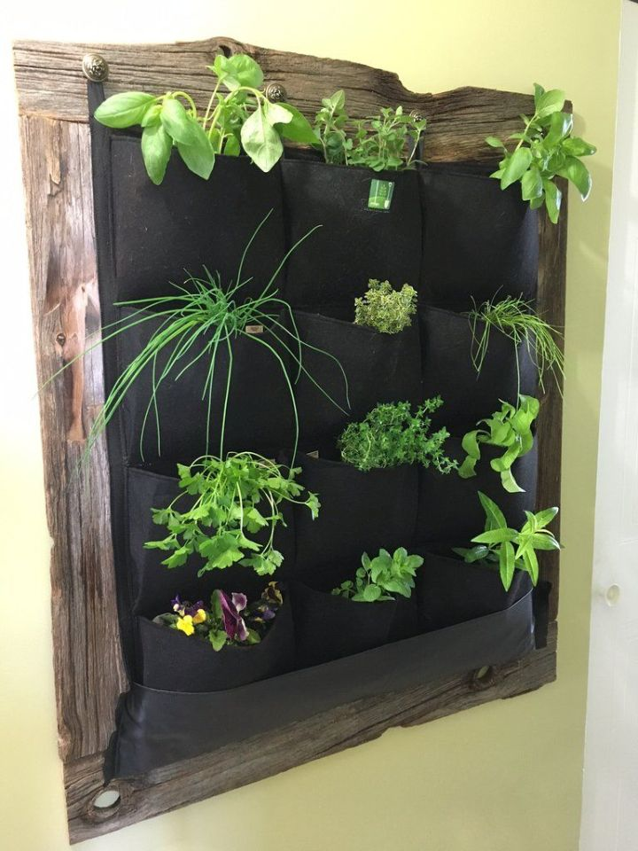 plant wall pockets