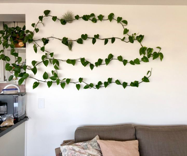 plant wall system