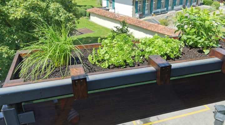 balcony garden bed