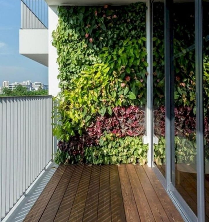 balcony garden wall