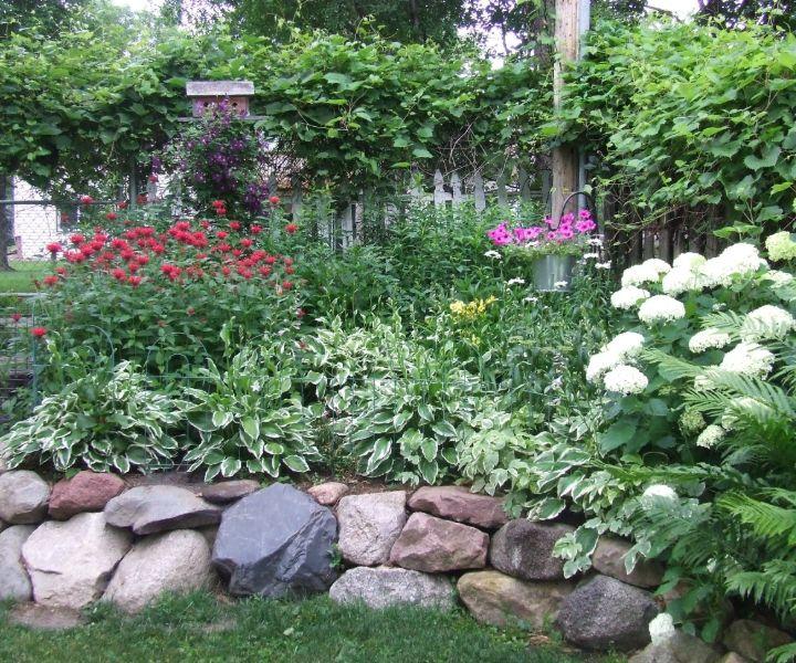 bee balm garden design