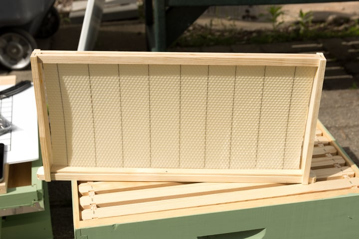 bee hive frame with foundation