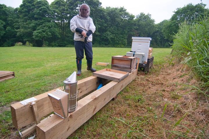 bee hive stand