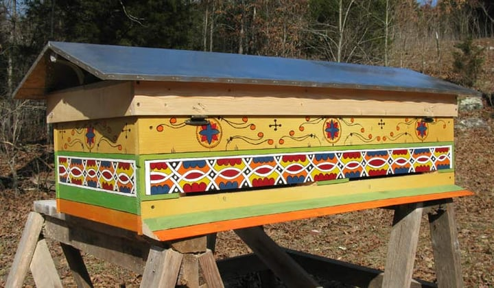 colorful horizontal hive