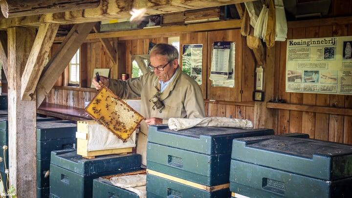 experienced beekeeper