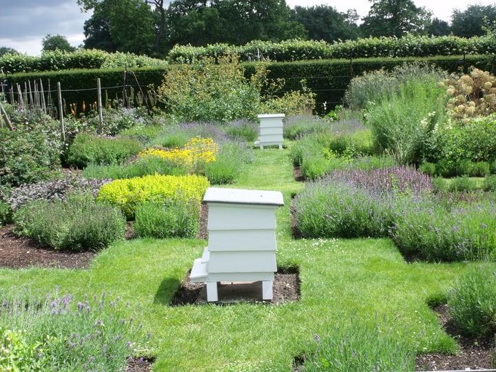 garden bee hives