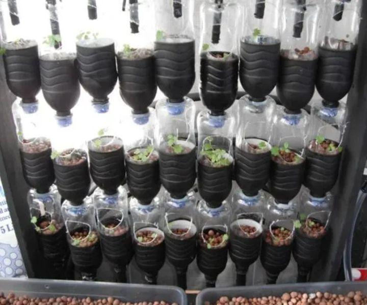 gardening water jug