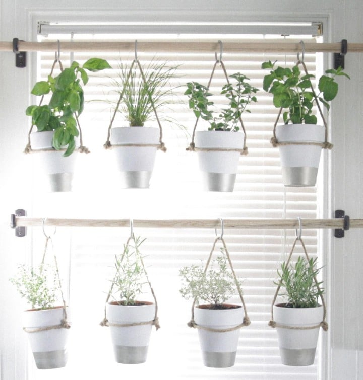 herb gardening containers
