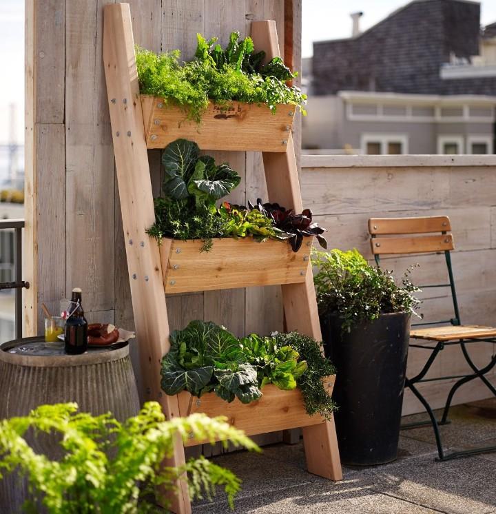 33 Best Herb Garden Ideas How To Start A Herb Garden