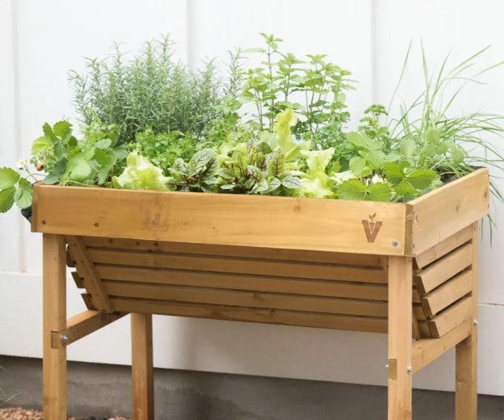 herb plant box