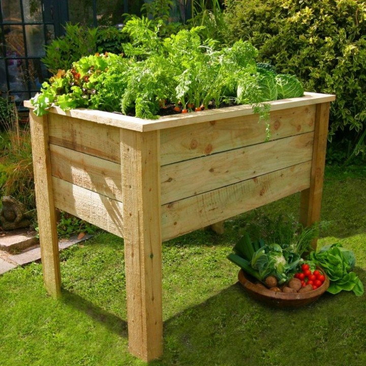 herb plant stand outdoor