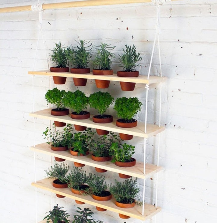 herb plant stand