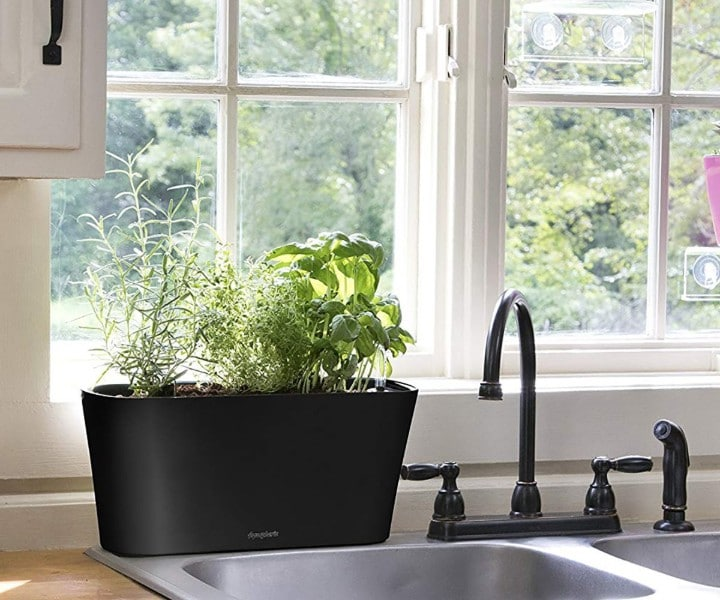 herb pots for kitchen