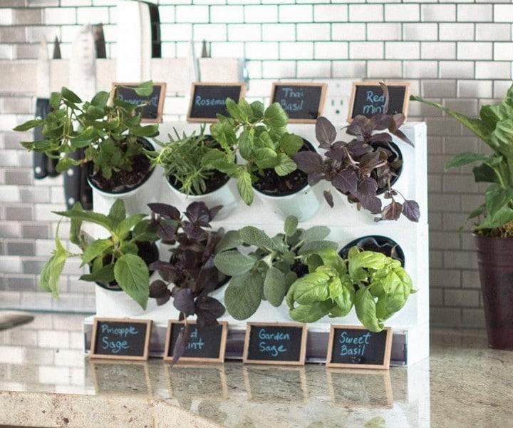 herb pots kitchen