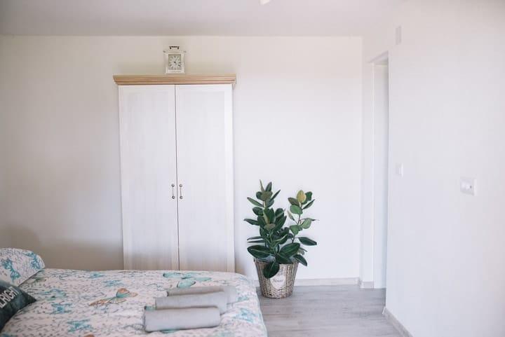 indoor bedroom plant