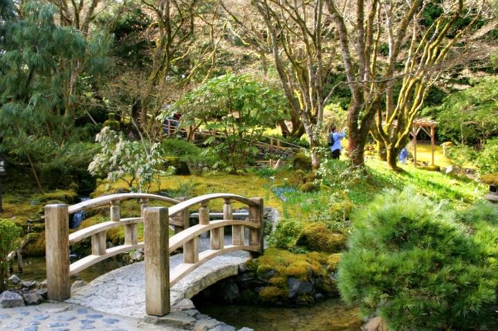 japanese garden wuth rock moss and bridge