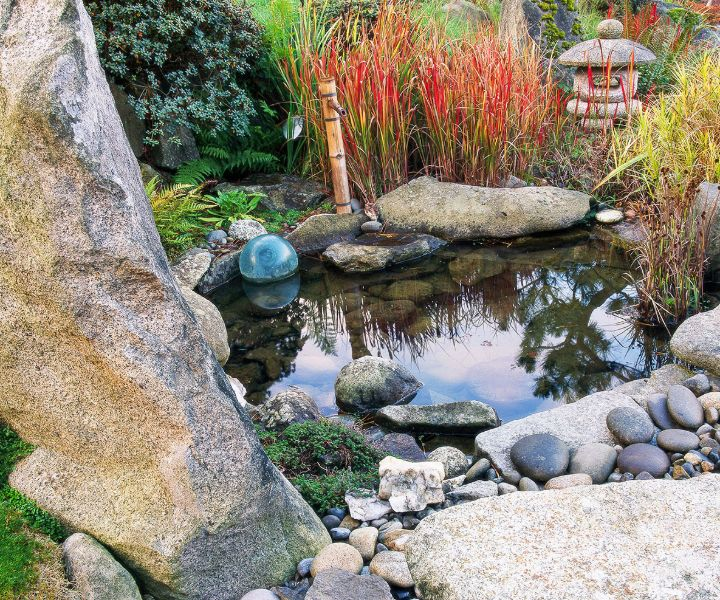 japanese gardens clearwater
