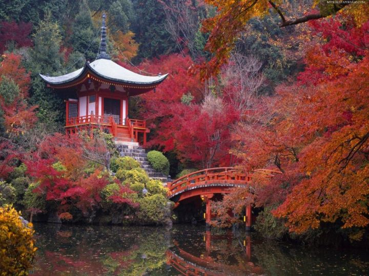 japanese gardens ideas
