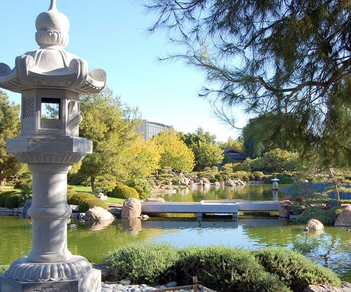 japanese gardens phoenix