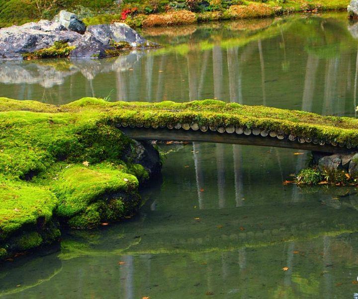 japanese gardens rockford
