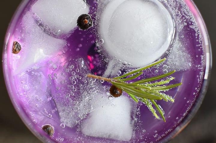 lavender gin tonic