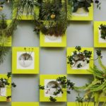 ornamental plant wall