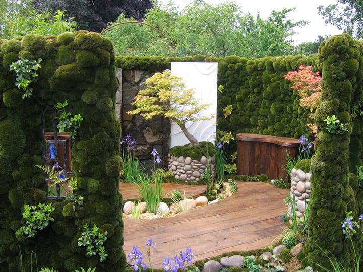 small japanese moss garden