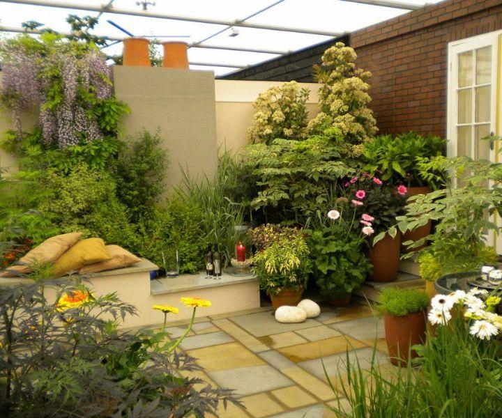 35 Best Terrace Gardening Ideas Terrace Garden Easy Guide