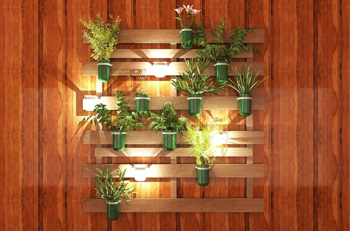 tiny plants wall