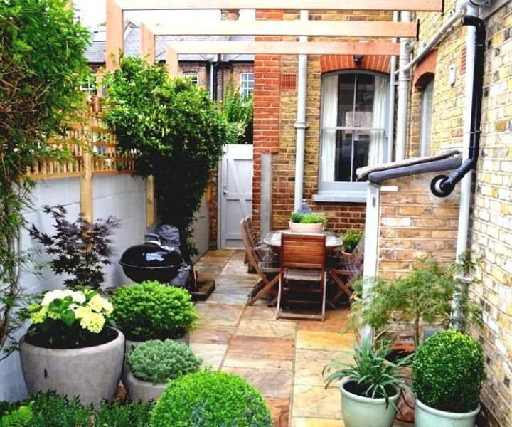 tips for terrace gardening