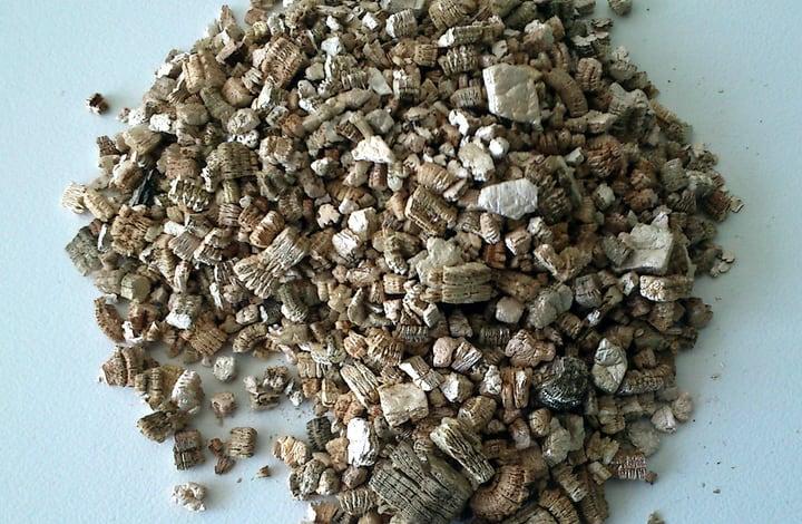 vermiculite soil for lavender plant