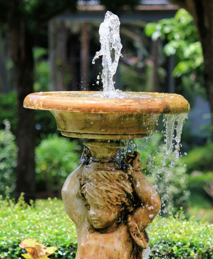 water for gardening