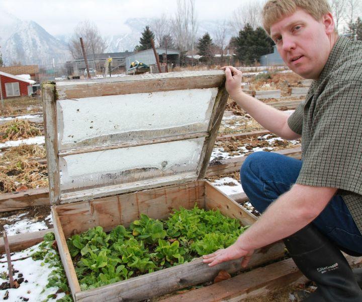 winter veggie gardening