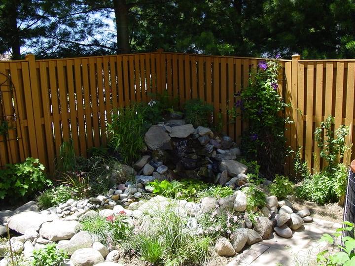adding more plants around the diy pond