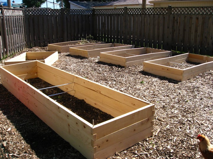 choose garden beds