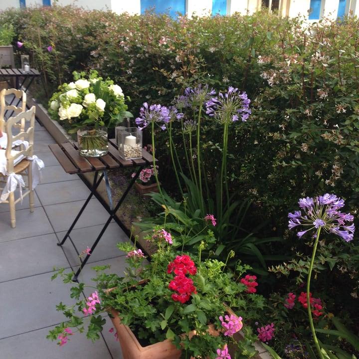 compact terrace garden